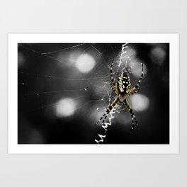 Banana Spider Macro Color Pop Art Print