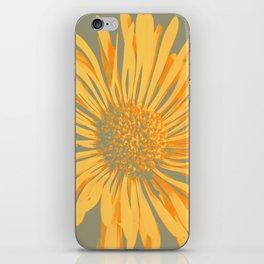 IN CINEREO iPhone Skin