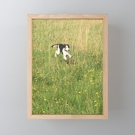 Happiness is running wild and free, and not letting your feet touch the ground! Framed Mini Art Print