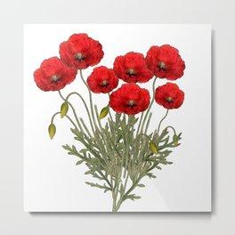 Flanders Red Poppy Metal Print