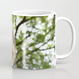 Morkie in the Woods Coffee Mug