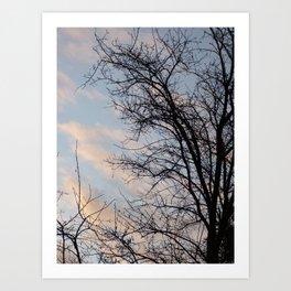Winter sun and tree Art Print
