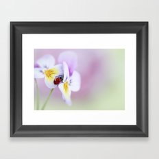 Ladybird... Framed Art Print