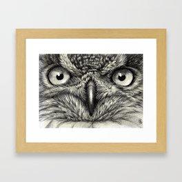 Eagle Owl 878 Framed Art Print