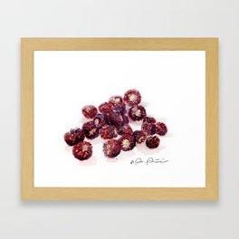 Backyard Berries Framed Art Print