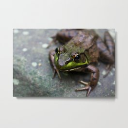 Smiling beauty. Metal Print