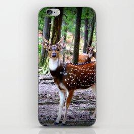 Axis Deer iPhone Skin