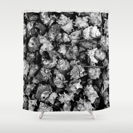 Shattered Shells Shower Curtain
