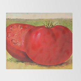 Vintage Illustration of a Beefsteak Tomato (1905) Throw Blanket