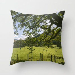 Sunlight through Oak tree and grazing sheep at Swinside. Lake District, UK. Throw Pillow