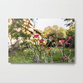 Around Wat Chiang Man Metal Print
