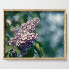 Syringa vulgaris lilac Serving Tray