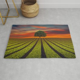 Lonely Tree In Field At Sunset Ultra HD Rug