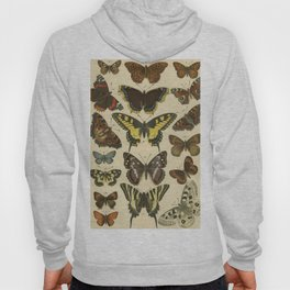 Beautiful Butterflies Hoody