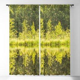 Green Blackout Curtain