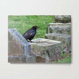 Cemetery Raven  Metal Print