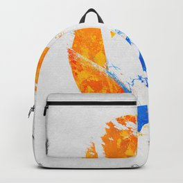 Aperture Vandal Backpack