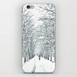 winter symphony iPhone Skin