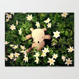 Yeah, Spring flowers Canvas Print