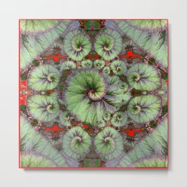Escargot Begonias Abstract Metal Print