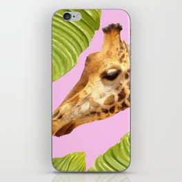 Giraffe with green leaves on a pink background iPhone Skin