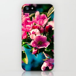 Pink Crab Apple Flowers iPhone Case