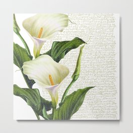 Beautiful Calla Lily #society6 #buyart #decor #lifestyle Metal Print