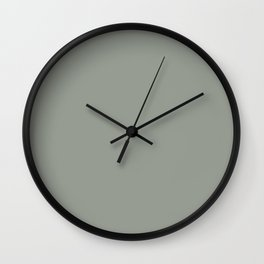 Frosty Pastel Green Solid Color Pairs with Sherwin Williams Haven 2020 Forecast Color - Acacia Haze Wall Clock