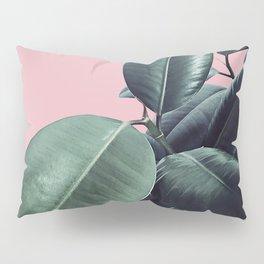 Ficus Elastica #14 #CoralBlush #decor #art #society6 Pillow Sham