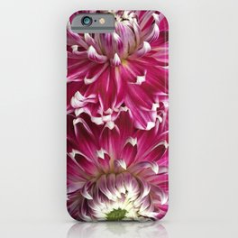 Dinner in The Garden iPhone Case