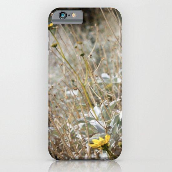 Rarity 2 iPhone & iPod Case
