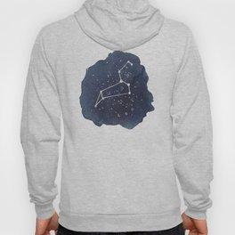 leo constellation zodiac Hoody