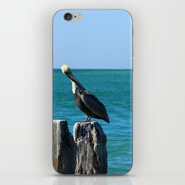 Two Old Guys On A Jetty iPhone Skin