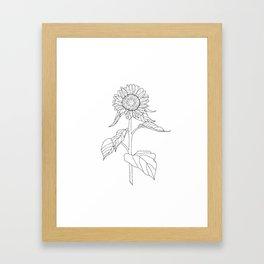 Sunflower Drawing Framed Art Print