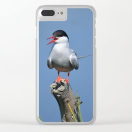 Arctic Tern Clear iPhone Case