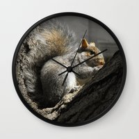 squirrel Wall Clocks featuring Squirrel by Mandy Becker