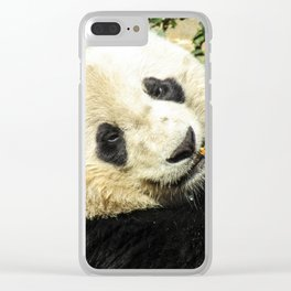 Bao Bao the Giant Panda Clear iPhone Case