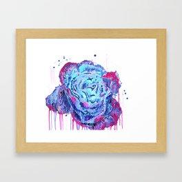 Weeping Blue Rose Framed Art Print