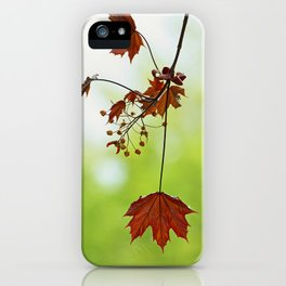 springtime! ... symphony of leaves iPhone Case