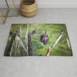 Green Heron in the channel Rug