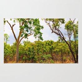 Eucalyptus trees in the bush Rug