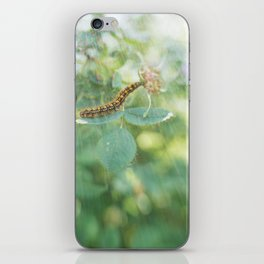 Sun-Drenched iPhone Skin