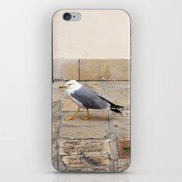Grumpy Seagull iPhone Skin