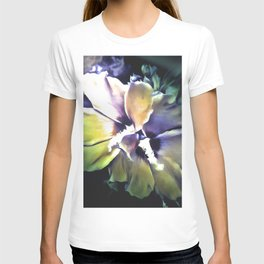 Sun Rays On The Hibiscus Flower T-shirt