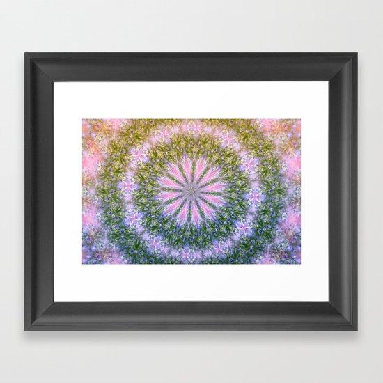 In Full Bloom... Framed Art Print