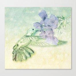 Hummingbird Kisses Canvas Print