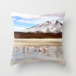 Pink Flamingos & a Peak in the Andes Throw Pillow