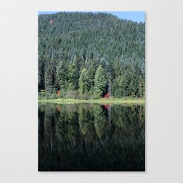 Pines and Reflection Canvas Print