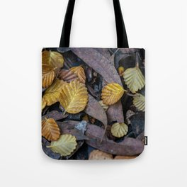Forest Floor Fagus Tote Bag
