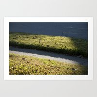Green Grass Curb Art Print